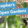 St Christopher's Virtual Open Gardens