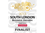 South London Business Awards 2013 Finalist