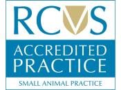 Accredited Small Animal Practice