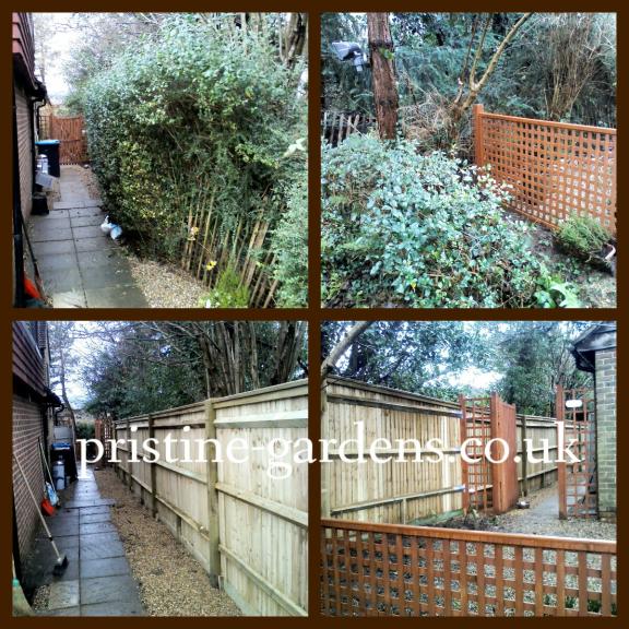 Pristine gardens woking for Pristine garden rooms