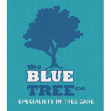 The Blue Tree Company Tree Surveyors
