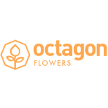 Octagon Flowers Bolton