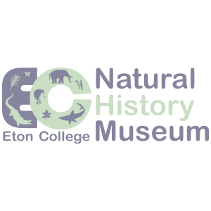 Eton Natural History Museum, Windsor