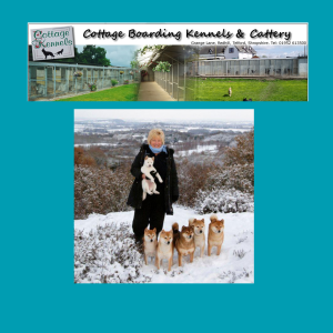 kennels cattery telford