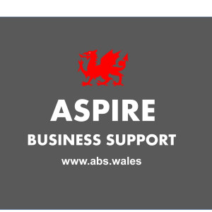 Aspire Business Support