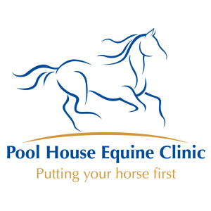 pool, house, equine, clinic, logo