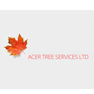 Tree Services in Farnham