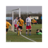 Harborough Town Football Club-11 pitches 38 teams