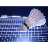 Windsor & Maidenhead Badminton League