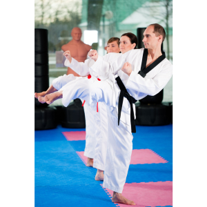 Bushido Martial Arts and Fitness Centre