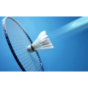 Haverhill Badminton Club