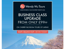 BUSINESS CLASS UPGRADE FROM ONLY £99PP