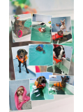 Dog Spa Pamper Days at K9 Core Hydrotherapy & Rehabilitation Centre