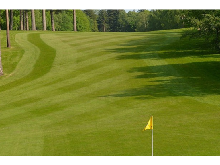 Enjoy a great golfing getaway at The Bromley Court Hotel