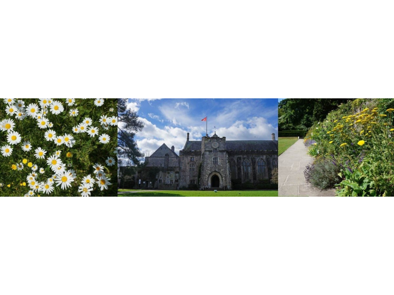 Summer Sizzler Stay at Dartington Hall from £75 per night bed and breakfast this summer!
