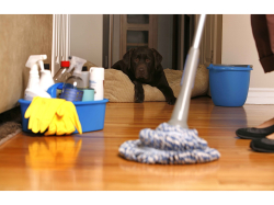 THREE OR SIX HOURS OF CLEANING FROM ONLY £49.95 - Save 50%
