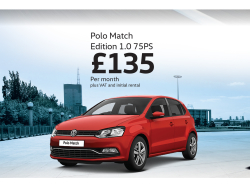 Fancy a smart new Polo for Business?