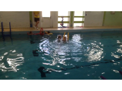 CHILDRENS SWIMMING COURSE - 7 WEEKS - JUST £28!