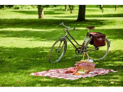 Tailored-Made Romantic Picnics from Florabelle's
