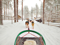 Family Day Trip to Lapland