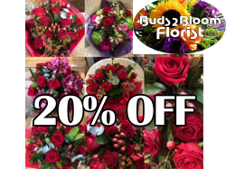 20% OFF ORDERS OVER £30 BUDS 2 BLOOM ST NEOTS