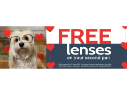 FREE lenses on your second pair