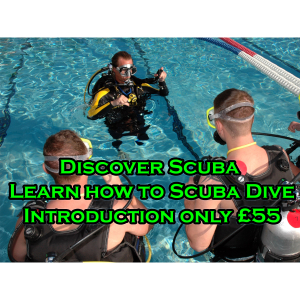 Stuck for a Perfect Gift  - Save over 20% on Scuba Diving Lessons only £55