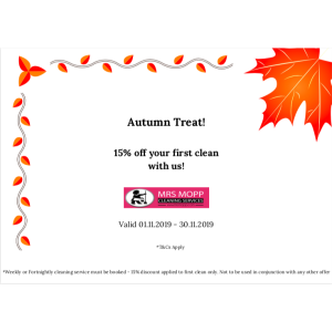 15% OFF YOUR FIRST CLEAN