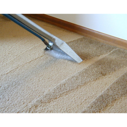 10% off Carpet Cleaning until 30th November