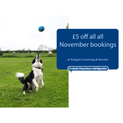£5 off all November bookings